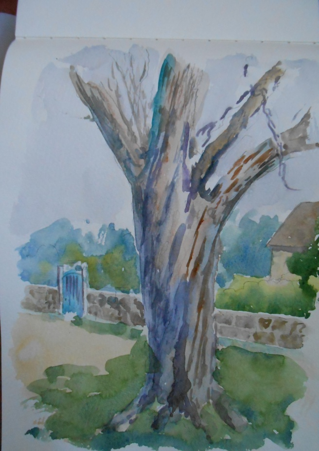 jan sketchbook tree