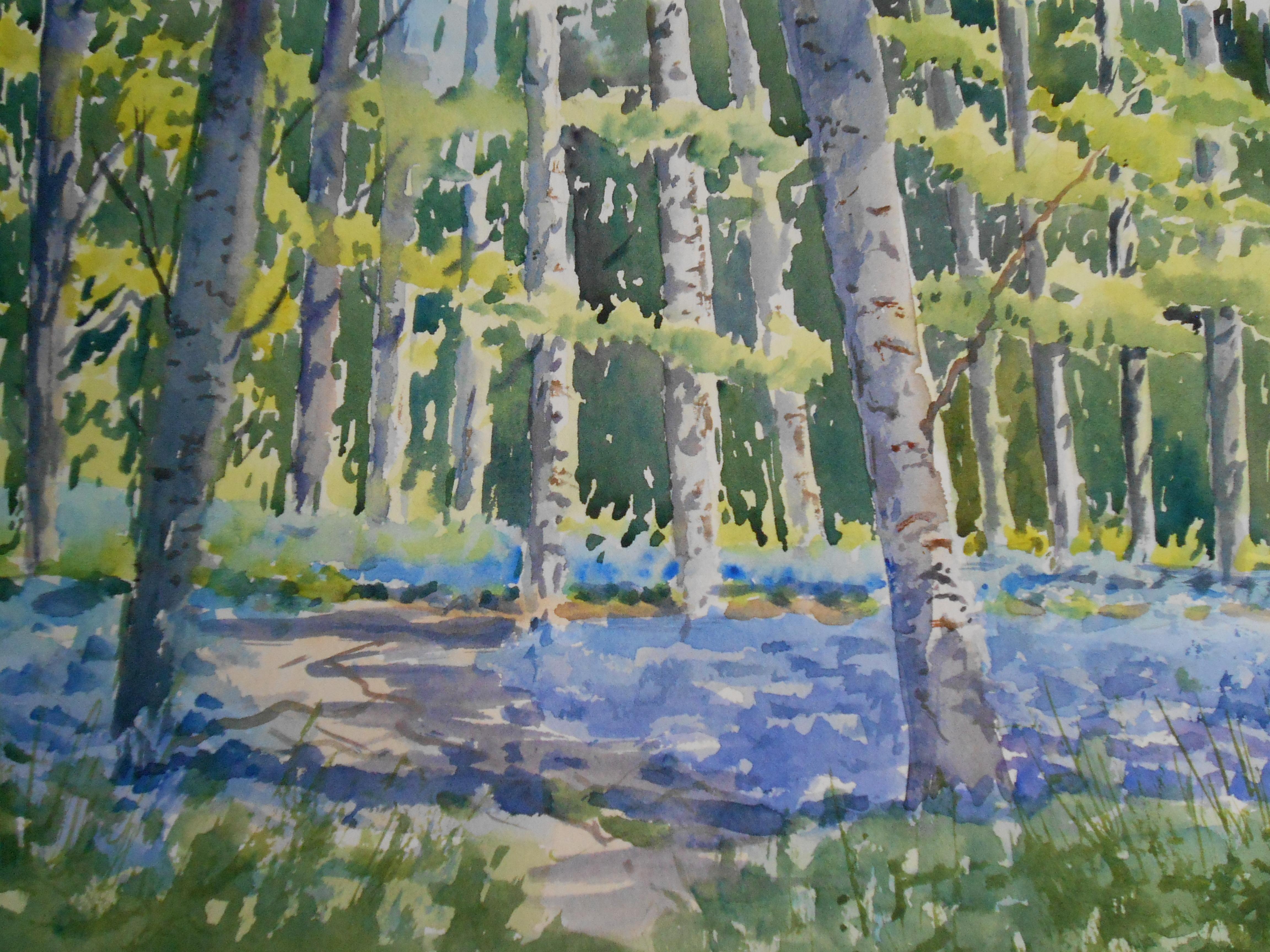 04-29 Among the Bluebells