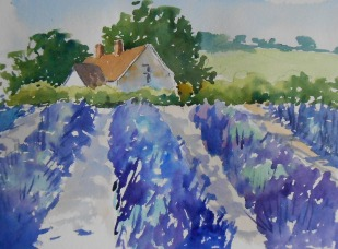07-19 Lavender time