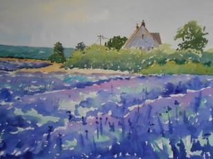 07-22 Summer Lavender