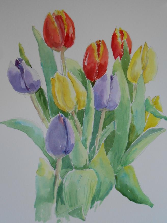 01-29 Supermarket tuliips