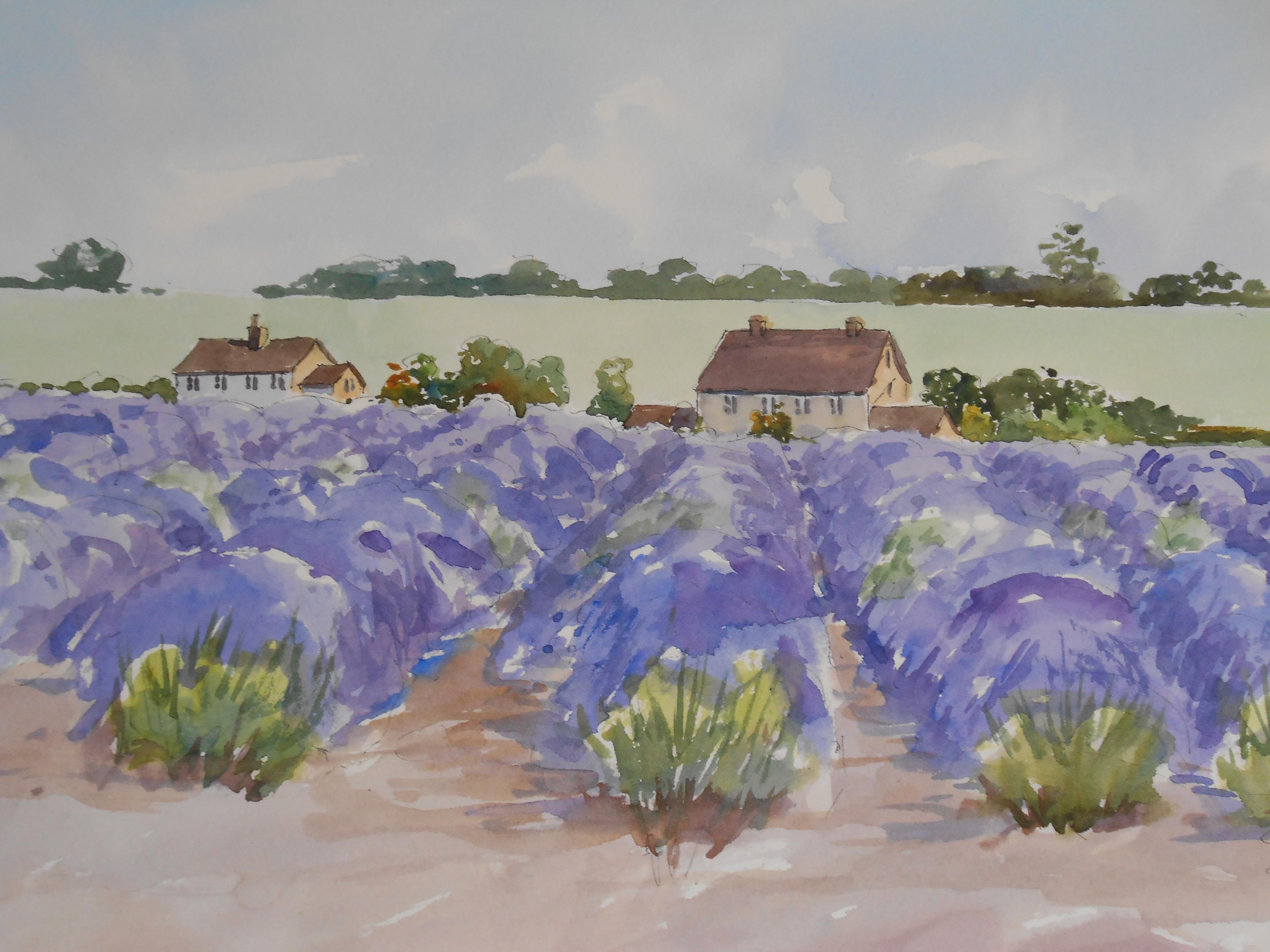 07-22 Snowshill Lavender